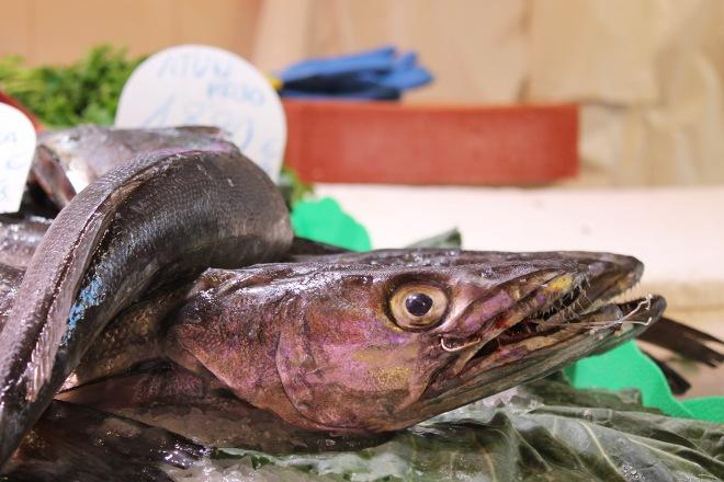 sndguerin-boqueria-fish-2