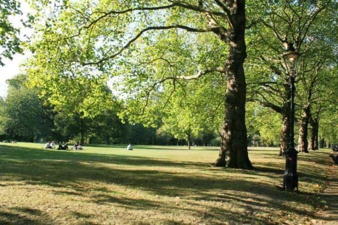 Cake + Whisky | London Hyde Park