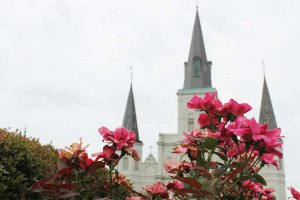 Cake + Whisky   Travel Guide to New Orleans   St Louis Cathedral