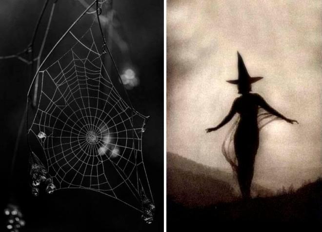 Halloween Inspiration | Spider web + witch