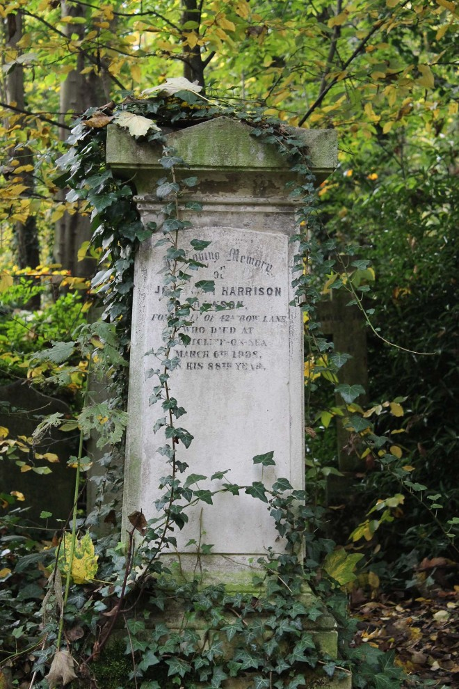 This was Halloween | Abney Park Cemetery, Stoke Newington, London