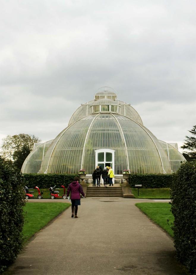 Kew Gardens | Cake + Whisky